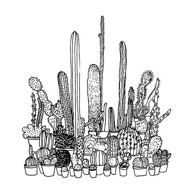 Cacti, print on paper, 2018 unlimited edition for 2018-19, 17 x 8 1/2 inches #print #drawing #art #openedition @acrstudio now on view at @equitygallery Hard-Line